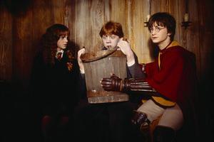 Гарри, Гермиона и Рон, которого тошнит слизнями