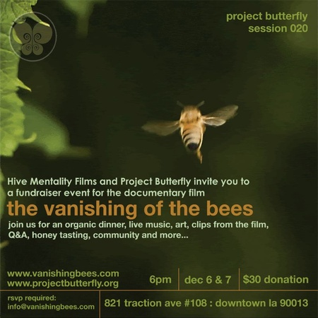 the vanishing of the bees This documentary takes a piercing investigative look at the economic, political and ecological implications of the worldwide disappearance of the honeybee.