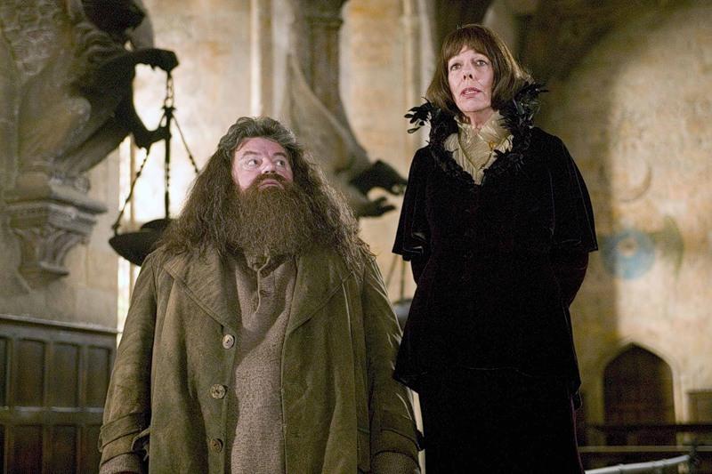 Хагрид из «Гарри Поттера» оказался в инвалидном кресле