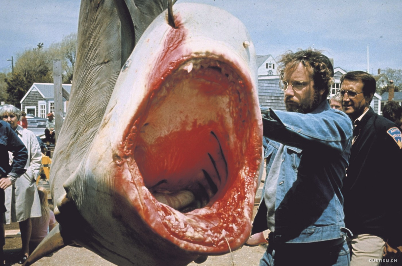 """Shot from the movie """"Jaws"""""""