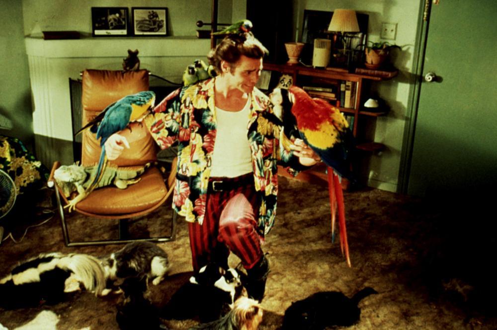 """Кадр из фильма """"Эйс Вентура: Розыск домашних животных"""""""