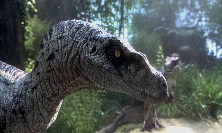 Кадр из фильма «Парк Юрского периода 3»