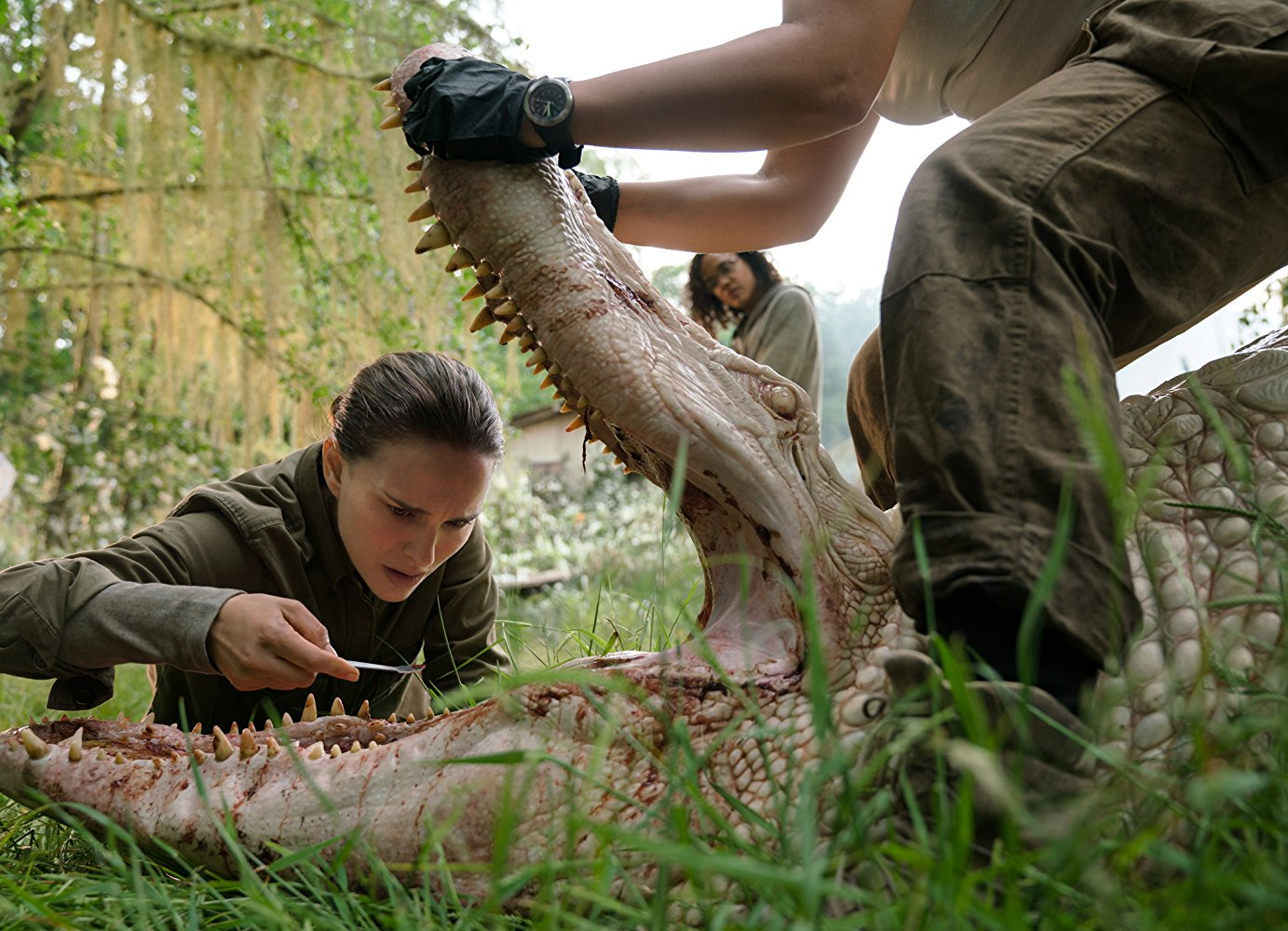 """Shot from the film """"Annihilation"""""""