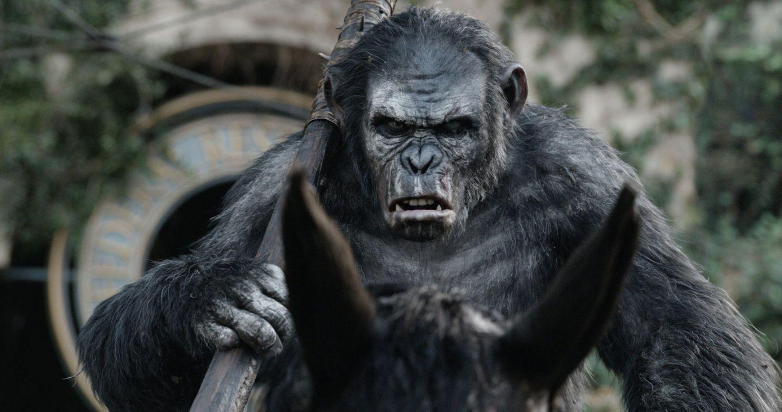 скачать фильм планета обезьян 2 на телефон бесплатно