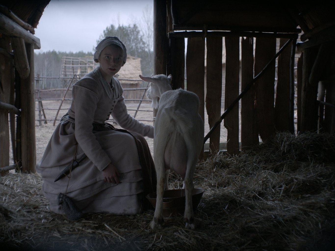 """Кадр из фильма """"Ведьма"""""""