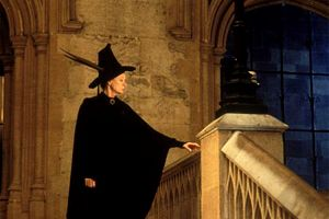 the controversy over harry potter essay