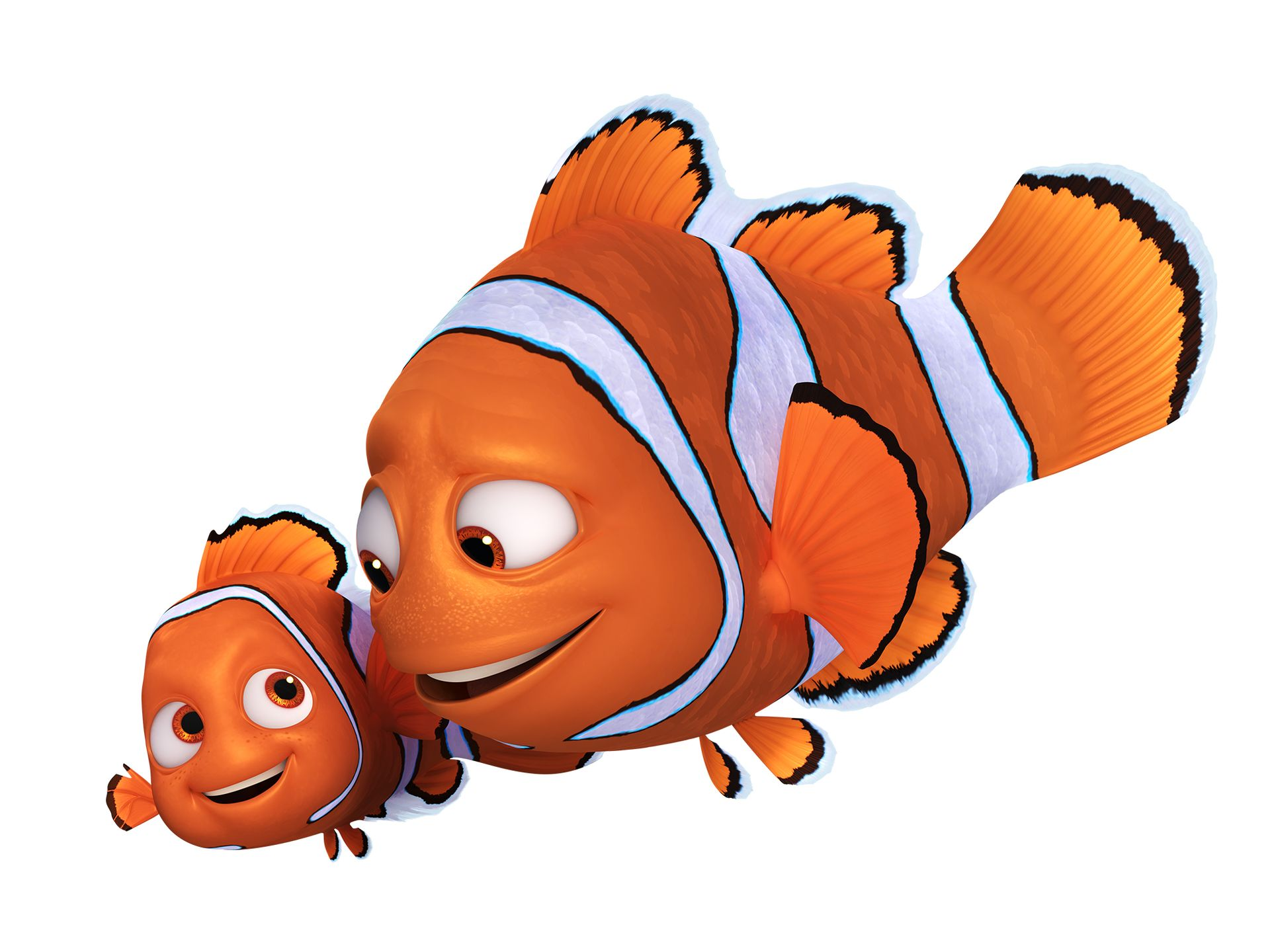 рыбка дори картинка на белом фоне противном