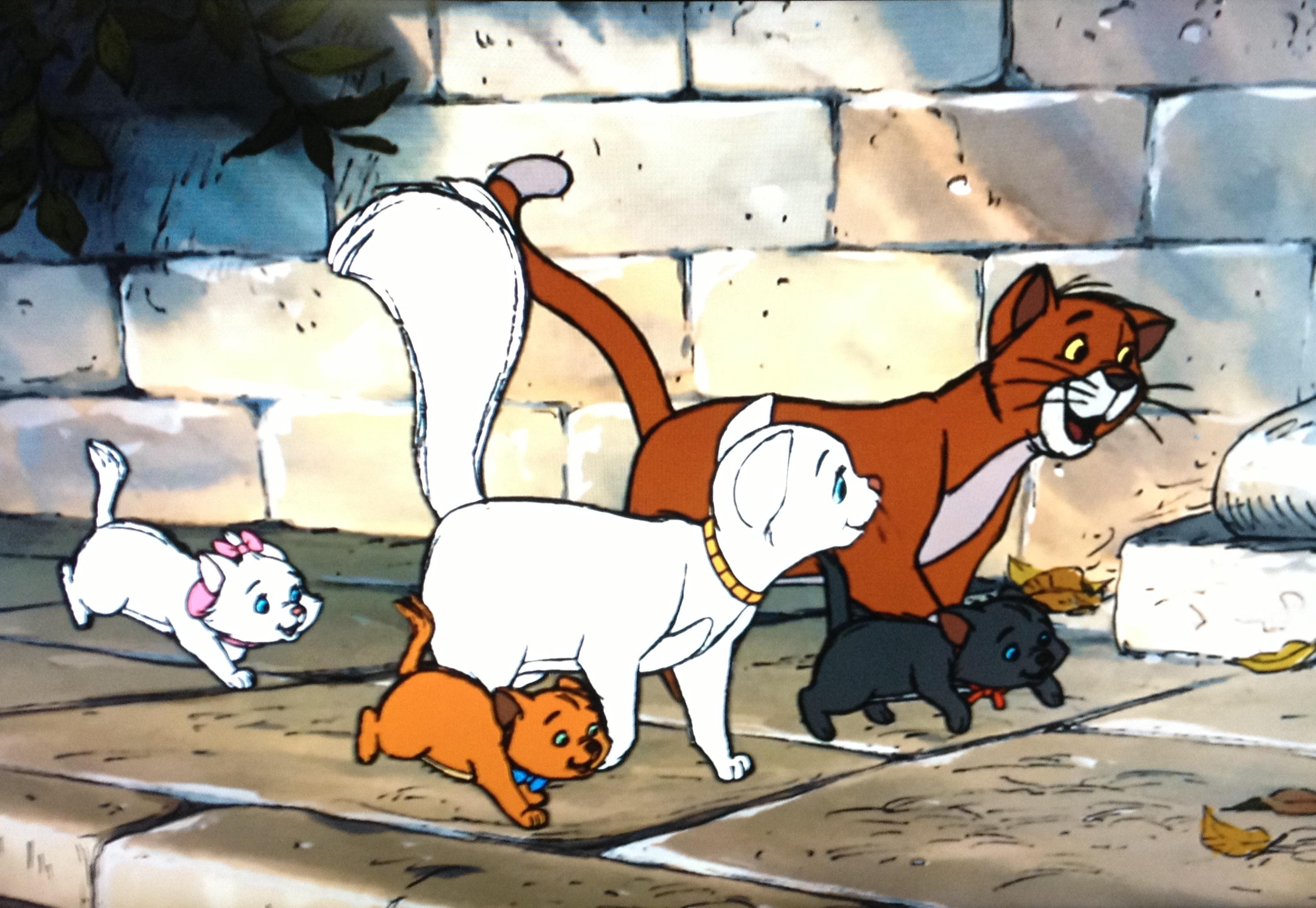 Смешные иисуса, смешные картинки про кошку из мультиков