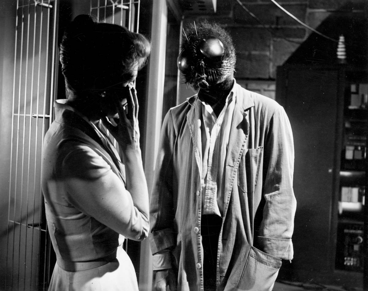technology and catastrophe in the movies the fly from 1958 and the fly from 1986 Synopsis: a brilliant but eccentric scientist begins to transform into a giant man/fly hybrid after one of his experiments goes horribly wrong.