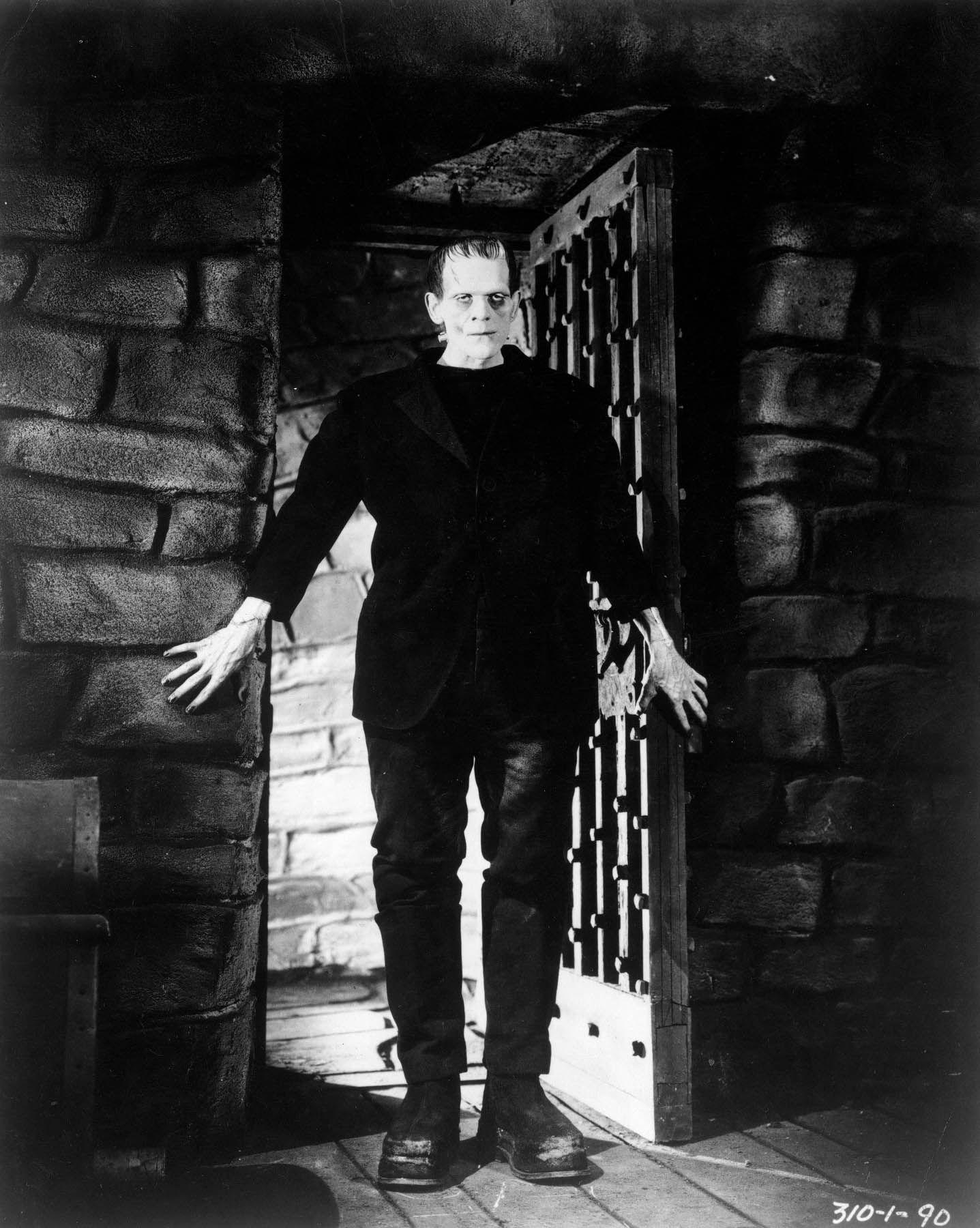 who is the actual monster in frankenstein essay Everything you ever wanted to know about the monster in frankenstein, written by masters of this stuff just for you.