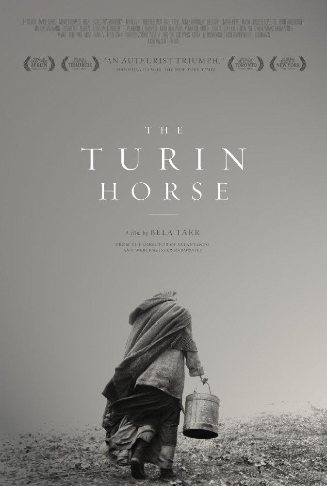 «Туринская Лошадь» / 2011