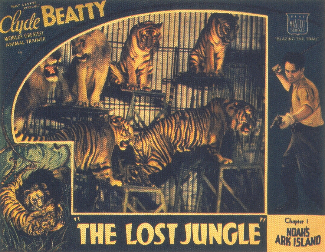 get lost in the jungle essay Their home they had lost it grief, despair, rage, overwhelmed him the jungle - the jungle essay the jungle, by upton sinclair.