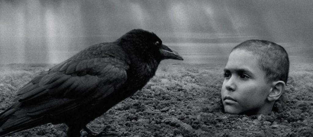 Да, это Joska: рецензия на фильм «Раскрашенная птица» — возможно, самое жестокое военное кино десятилетия