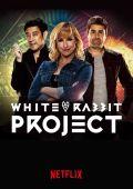 Проект Белый Кролик