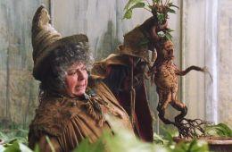 10 фильмов о злобных растениях