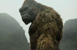 Планета обезьяны. Все, что мы можем рассказать о новом блокбастере «Конг: Остров черепа» (Борис Иванов, Film.ru)