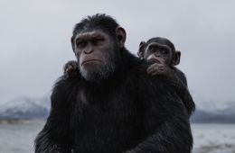 10 movies about the wars of people with intelligent animals