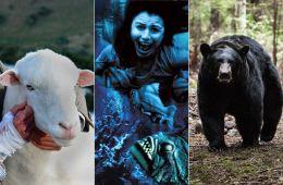 Враги наши меньшие: 7 хорроров о зловещих животных