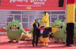 """Фоторепортаж: Cпециальный фотоколл """"Angry Birds в кино"""" в Канне"""