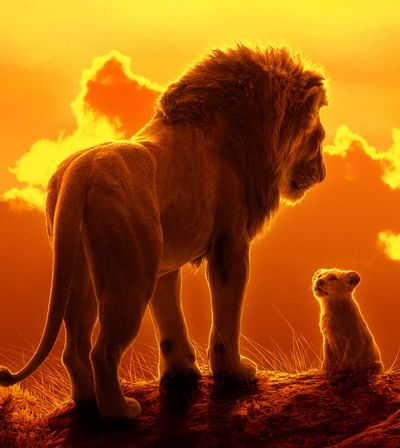 В мире животных: рецензия на фильм «Король Лев»