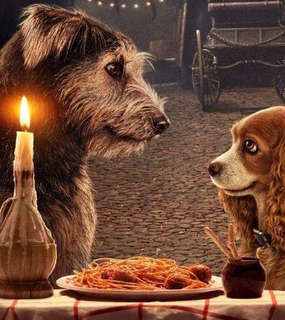 Сон собаки: рецензия на фильм «Леди и Бродяга»
