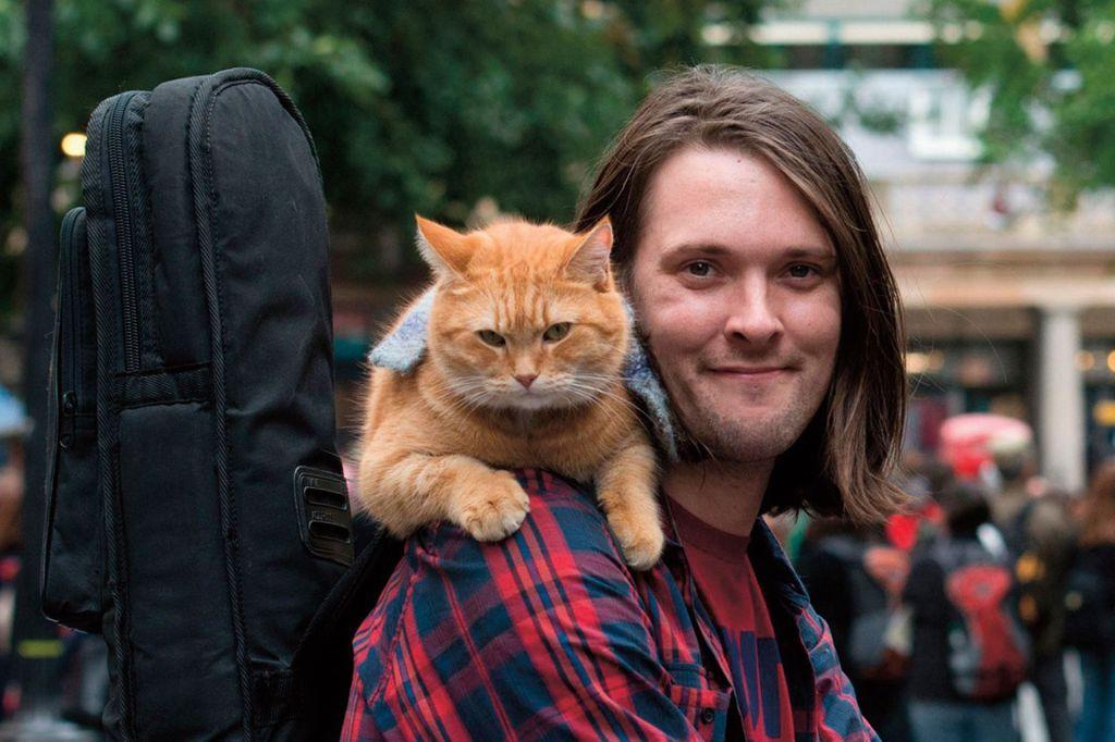 Сиквел фильма «Уличный кот по имени Боб» нашел режиссера