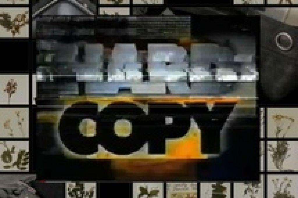 Фэйковый телерепортаж, стилизованный под запись с VHS, пытается разобраться со странным исчезновением Харриет Вангер