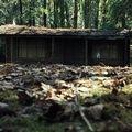 """Специальный показ фильма """"Хижина в лесу"""""""
