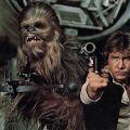 Легендарный Чубакка официально утвержден на VII эпизод «Звездных войн»