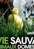 """Постер 2 из 2 из фильма """"Дикая природа домашних животных"""" /La vie sauvage des animaux domestiques/ (2009)"""