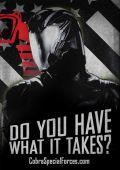 """Постер 29 из 29 из фильма """"G.I.JOE: Бросок кобры 2"""" /G.I. Joe: Retaliation/ (2013)"""