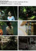 """Постер 6 из 6 из фильма """"Горный призрак"""" /Jin hutan/ (2009)"""