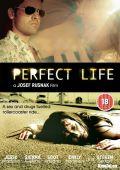 """Постер 1 из 1 из фильма """"Идеальная жизнь"""" /Perfect Life/ (2010)"""