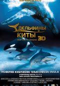 Дельфины и киты 3D