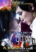 """Постер 1 из 2 из фильма """"Как сон"""" /Ru meng/ (2009)"""