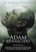 """Постер 11 из 13 из фильма """"Воскрешенный Адам"""" /Adam Resurrected/ (2008)"""