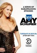 Внутри Эми Шумер /Inside Amy Schumer/ (2013)