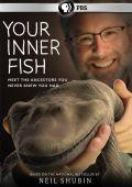 Внутренняя рыба /Your Inner Fish/ (2014)