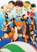 Волейбол!! /Haikyuu!!/ (2014)