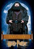 """Постер 18 из 18 из фильма """"Гарри Поттер и философский камень"""" /Harry Potter and the Sorcerer's Stone/ (2001)"""