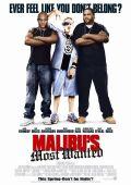 """Постер 1 из 1 из фильма """"Разыскивается в Малибу"""" /Malibu's Most Wanted/ (2003)"""