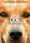 """Постер 2 из 13 из фильма """"Собачья жизнь"""" /A Dog's Purpose/ (2017)"""
