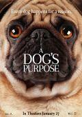 """Постер 5 из 13 из фильма """"Собачья жизнь"""" /A Dog's Purpose/ (2017)"""