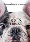 """Постер 3 из 13 из фильма """"Собачья жизнь"""" /A Dog's Purpose/ (2017)"""