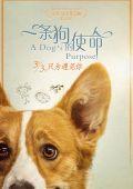 """Постер 10 из 13 из фильма """"Собачья жизнь"""" /A Dog's Purpose/ (2017)"""