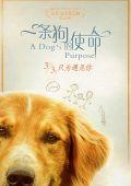 """Постер 11 из 13 из фильма """"Собачья жизнь"""" /A Dog's Purpose/ (2017)"""