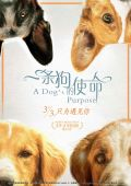 """Постер 9 из 13 из фильма """"Собачья жизнь"""" /A Dog's Purpose/ (2017)"""
