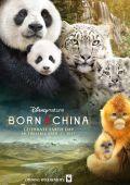 Рожденный в Китае