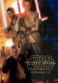 """Постер 8 из 36 из фильма """"Звёздные войны: Пробуждение силы"""" /Star Wars: Episode VII - The Force Awakens/ (2015)"""