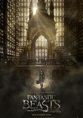 """""""Фантастические Твари и Где Они Обитают"""" /Fantastic Beasts and Where to Find Them/ (2016)"""